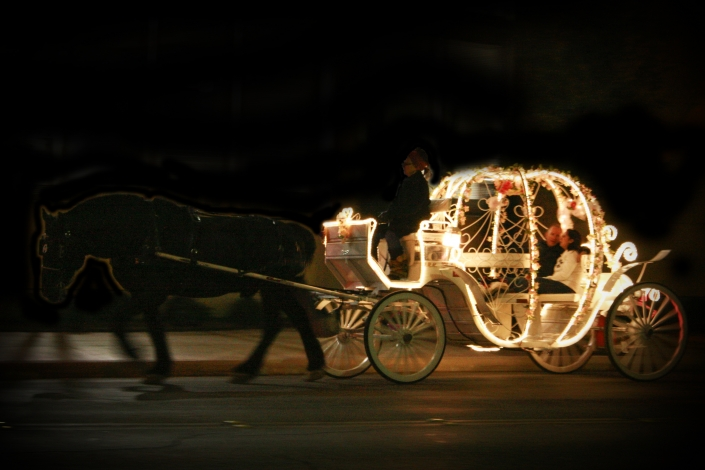 Carriage Horses San Antonio Lights Romance